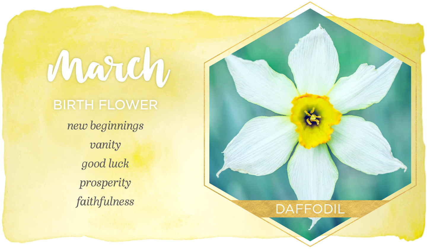 Birth Month Flowers - March