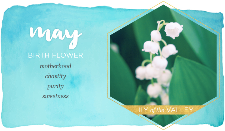 Birth Month Flowers - May