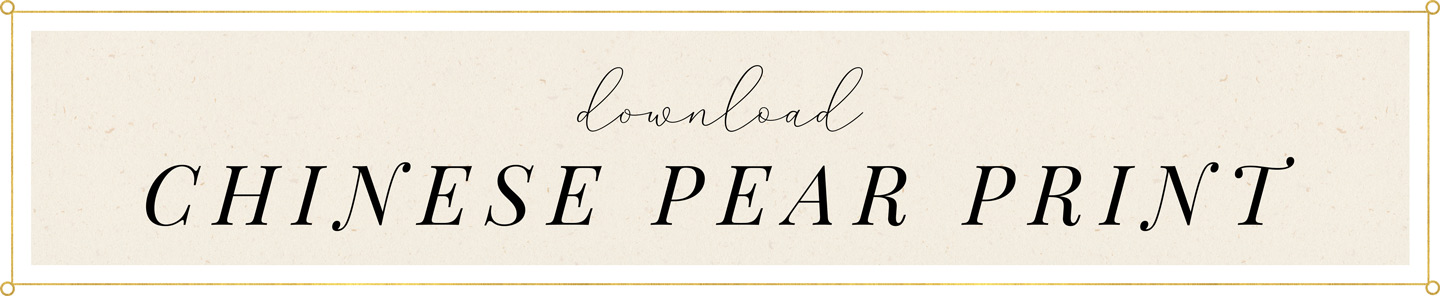 Download Chinese Pear Print