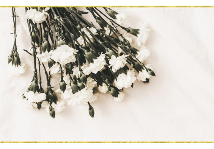 white flowers laying on pink cloth.