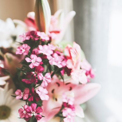 close up of pink flowers on window sill.