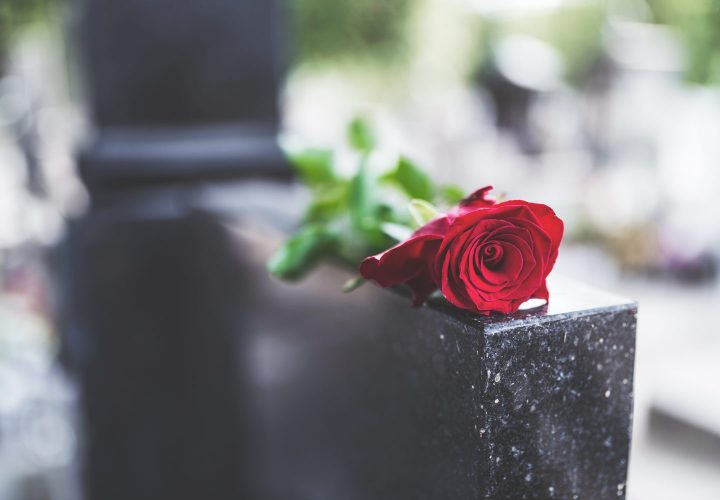 red rose laying on tombstone.