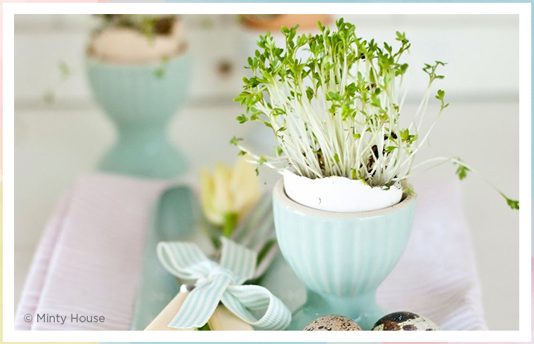 eggshell place setting