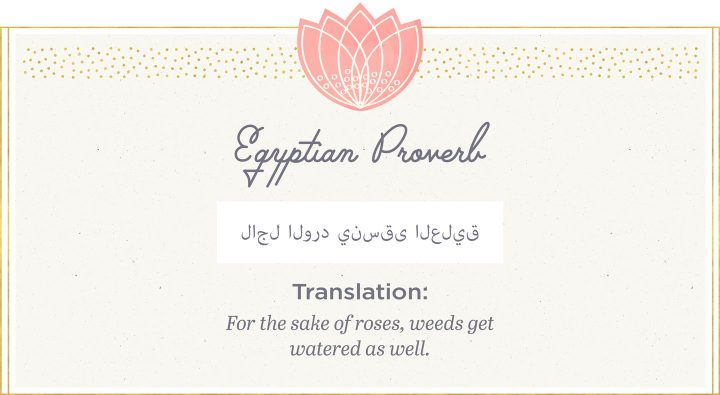 Egyptian proverb