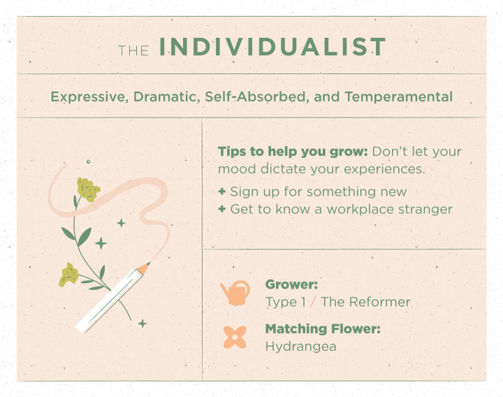 The Individualist Type Enneagram