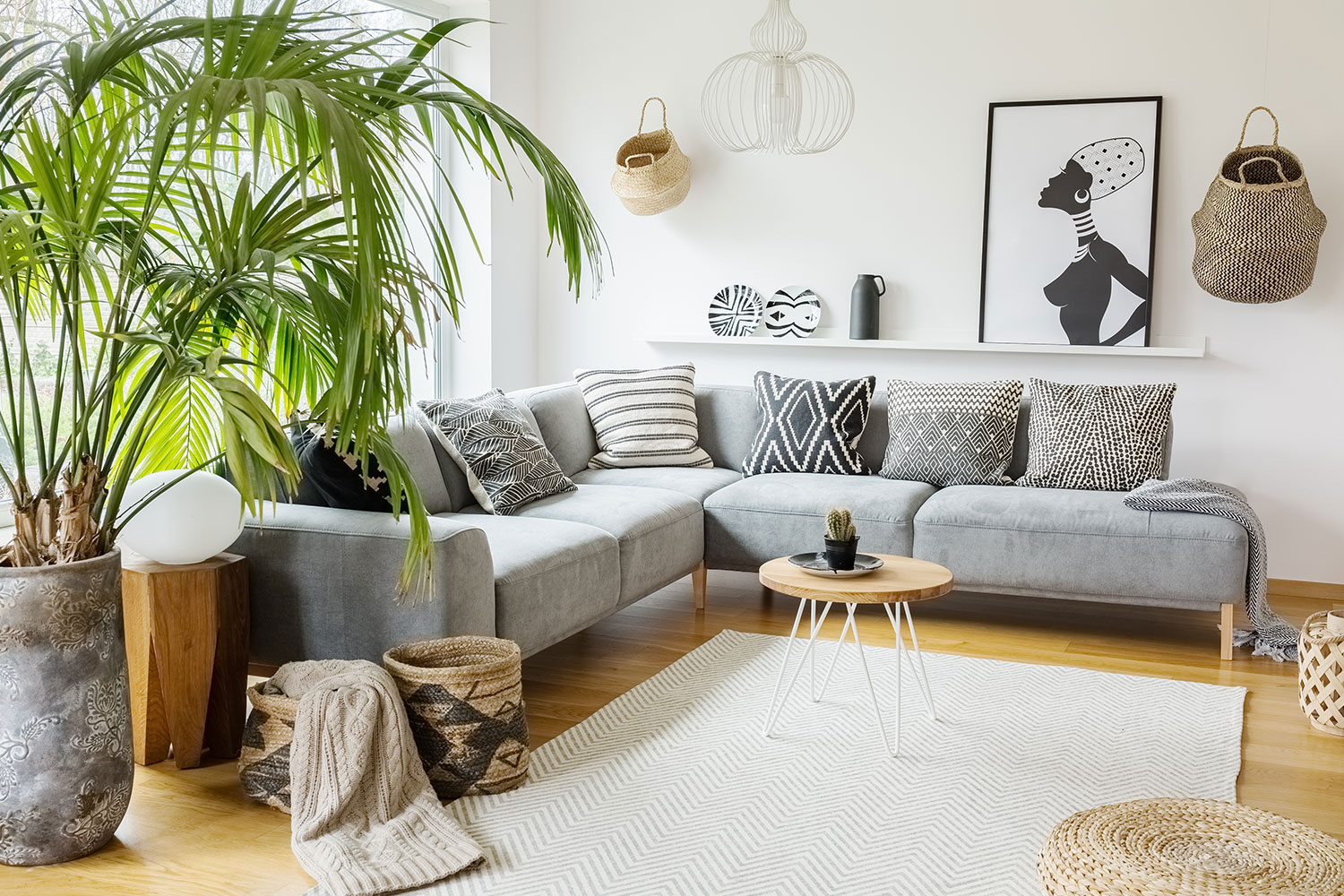 19 Large Indoor Plants For Your, Living Room Plants