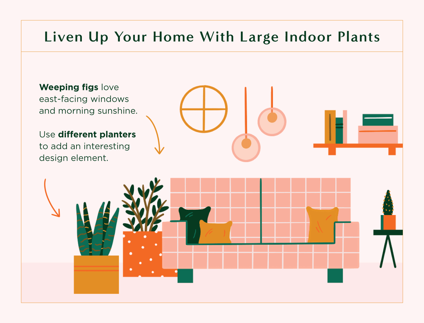 decorate your living room with indoor plants