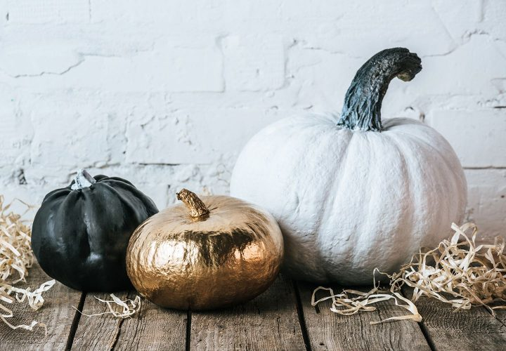 stylish pumpkins on wooden board with white brick wall as background