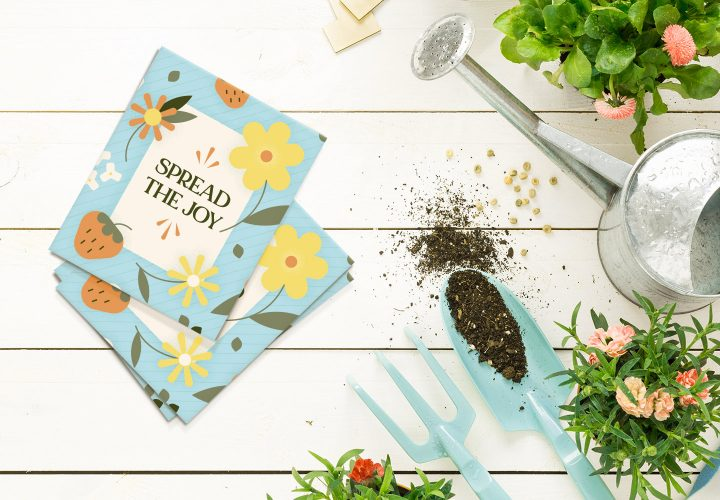 fun seed packets