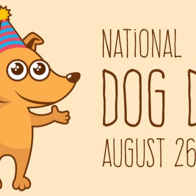 National Dog Day August 26th