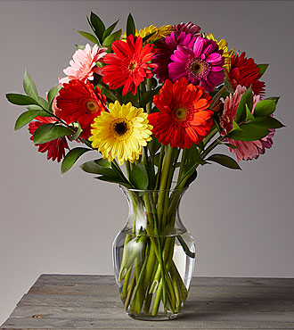 Colorful World Gerbera Daisy Flower Bouquet - 18 Stems