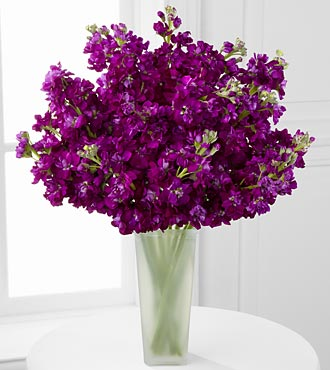 Moonlit Memories Purple Gilliflower Flower Bouquet - 15 Stems - Vase Included