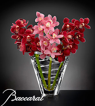 Truly Captivating Cymbidium Orchid Flower Bouquet In Baccarat Crystal Vase - 3 Stems