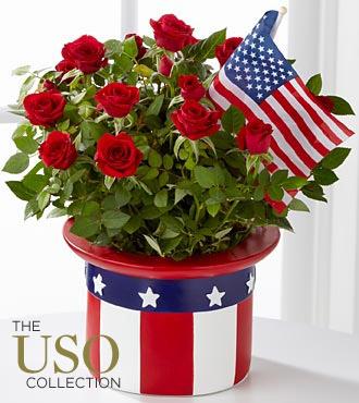 Memorial Day Flowers - American Pride Mini Rose