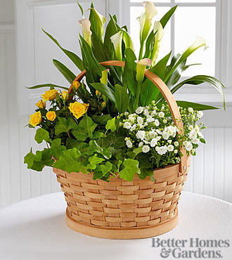 The FTD Cheerful Wishes Blooming Basket By Better Homes And Gardens