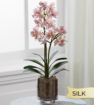 Smithsonian Silk Lavender Cattleya Orchid In Glass Container